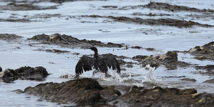 California oil spill gushed like hose #039;without a nozzle,#039; investigators say