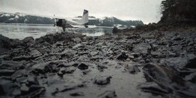 Exxon Valdez oil still found