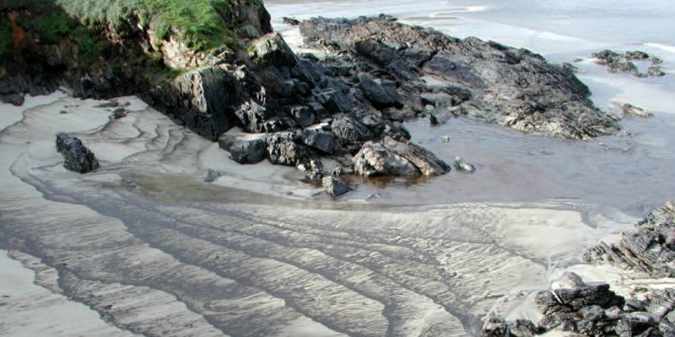 Oiled shoreline following the
