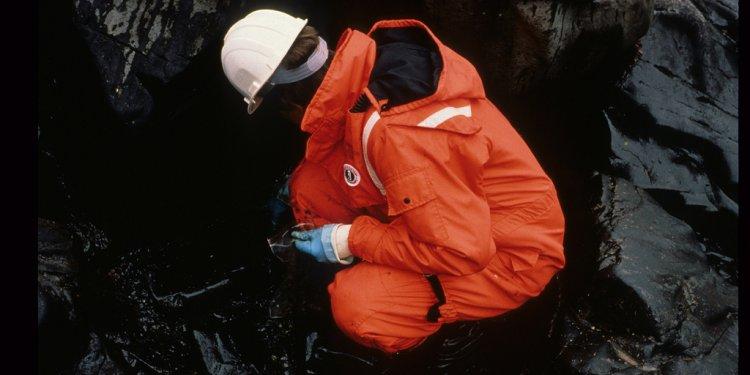 Exxon Valdez Oil Spill - 1006