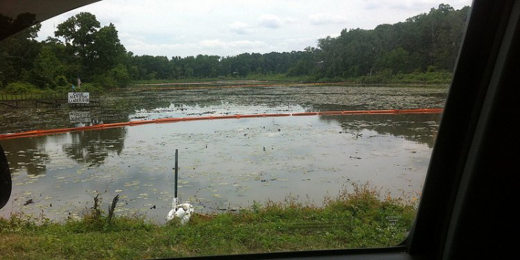 Lake Conway Exxon Oil Spill Clean Up