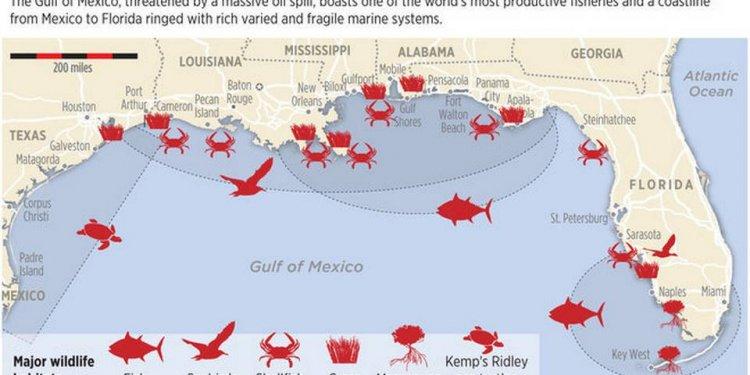 SOURCE: Florida Fish and