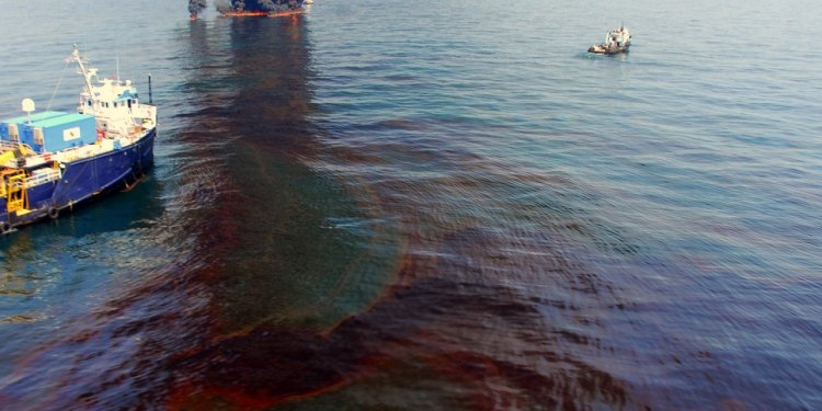Can Now Absorb Oil Spills