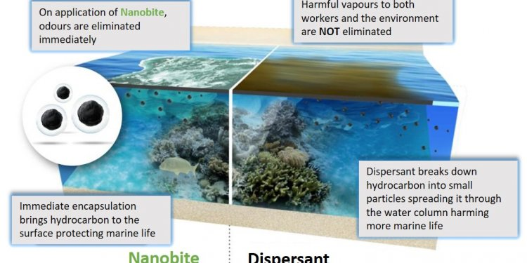 Stage 2 - Nanobite