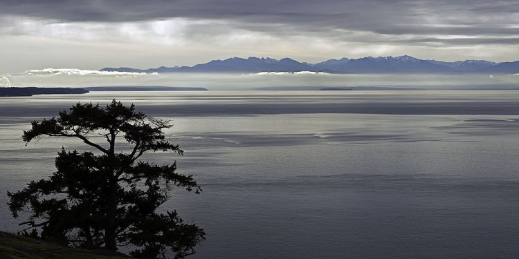 Salish-sea-and-olympic