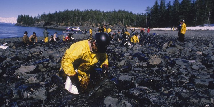 The Exxon Valdez Oil Spill: