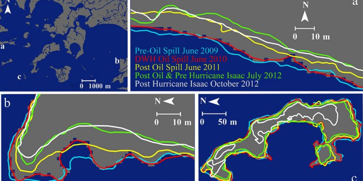 Horizon oil spill and