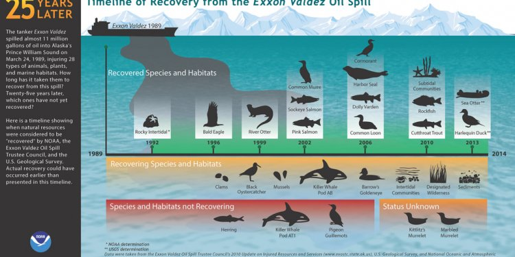 Exxon Valdez oil spill article