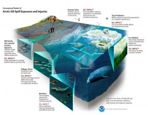 Cut-away drawing showing oil spill dilemmas at numerous sea depths