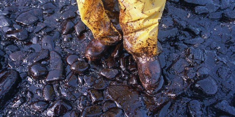 Exxon Valdez oil spill effects on the environmental