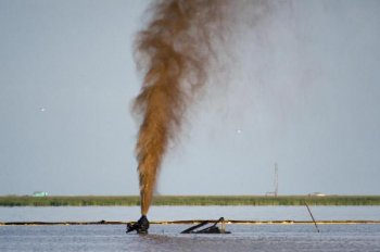 Oil spills still take place every day all over the world - this one in Louisiana salt marsh. Picture credit: © Carrie Vonderhaar, Ocean Futures Society