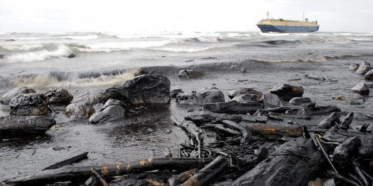 What caused the Exxon Valdez oil spill?