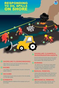 Responding to oil spills on coast: This graphic shows a synopsis of men and women using eight means of clearing up oil from shorelines. 1. Shoreline flushing/washing: Water hoses can rinse oil from shoreline into water, in which it may be quicker collected. 2. Booms: Long, floating, interconnected obstacles are accustomed to minmise the scatter of spilled oil. 3. Vacuums: Industrial-sized vacuum trucks can suction oil from the shoreline or in the water area. 4. Sorbents: Specialized absorbent products behave like a sponge to get oil  not water. 5. Shoreline cleansers and biodegradation representatives: Chemical cleaners that become saops may be used to pull oil, but require special permission. Nutrients can be added to assist microbes break up oil. 6. Burning. Generally known as