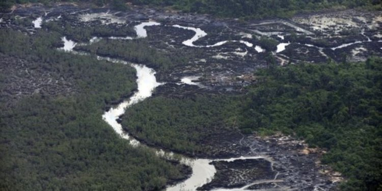 Shell oil spills