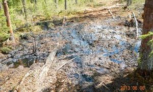 Tar Sands : pictures from a federal government scientist for the website of an oil spill in cool Lake, Alta