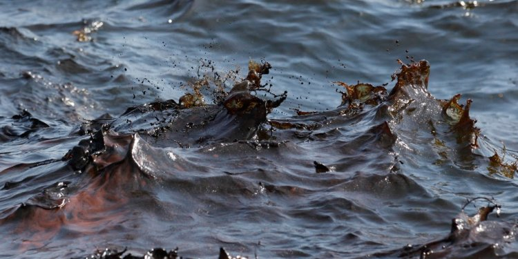 Oil spill Causes and effects