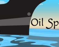 Interesting facts about oil spills